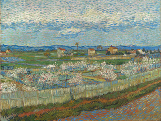Peach Blossoms in the Crau by Vincent van Gogh